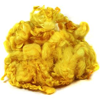 English Leicester fleece- goldenrod
